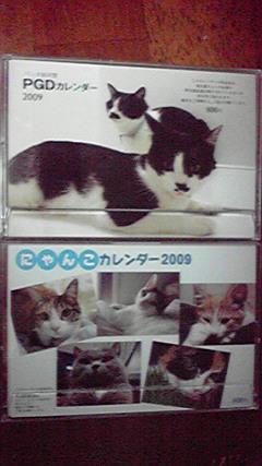 白黒猫からいろんな猫BS<br />  放送会長ママ出演